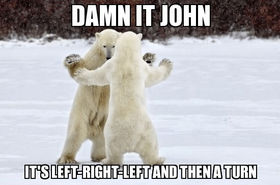Polar Bears - Damn it John: It's left-right-left and then a turn