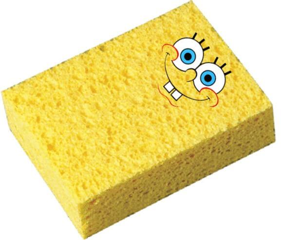 Sponge Bob Literal