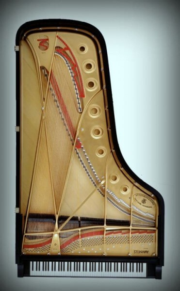 The Anatomy Of A Piano
